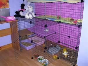 Indoor Hutch For Rabbit Indoor Rabbit Hutch 171 Creaturecritter