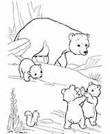 Build A Bear Coloring Pages For Kids - AZ Coloring Pages