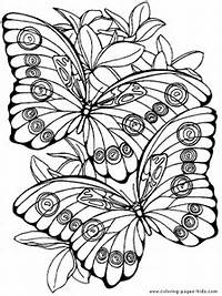 More Free Printable Butterflies Coloring Pages And Sheets Can Be Found