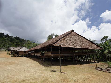 Kerang Terompet tahuri terompet kerang khas maluku indonesiakaya
