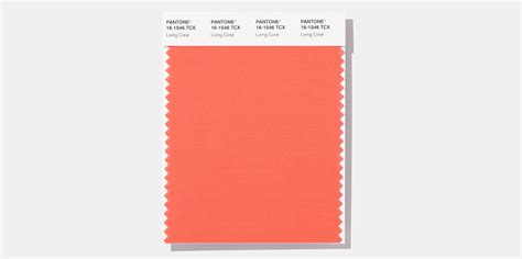color of the year pantone pantone color of the year 2019 myentertainmentnews