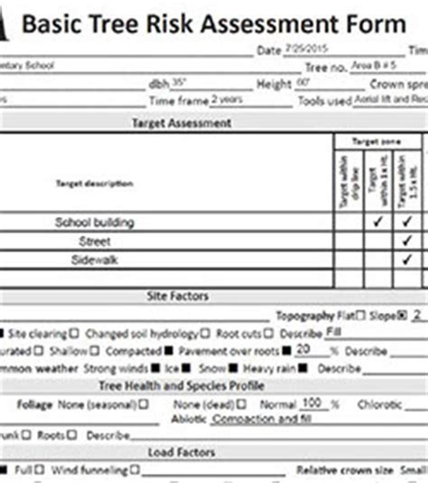 tree assessment report template tree risk assessment
