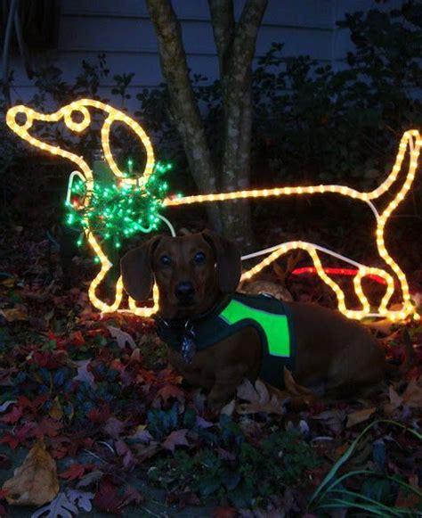 dachshund christmas lights dachshund i want it dachshund happy cupcake and wiener dogs