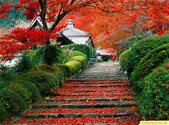 Beautiful Places Japan