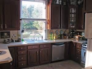 Painting kitchen cabinets ideas homes gallery