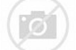 Lukisan Pemandangan Di Sawah Padi