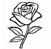 Coloring Blog For Kids Rose Flower Page Pictures