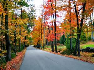 Fall foliage map travel channel com