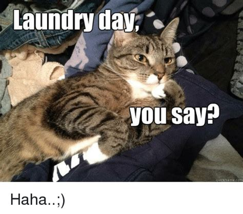 Laundry Meme - laundry day you say quick meme com haha laundry meme on sizzle