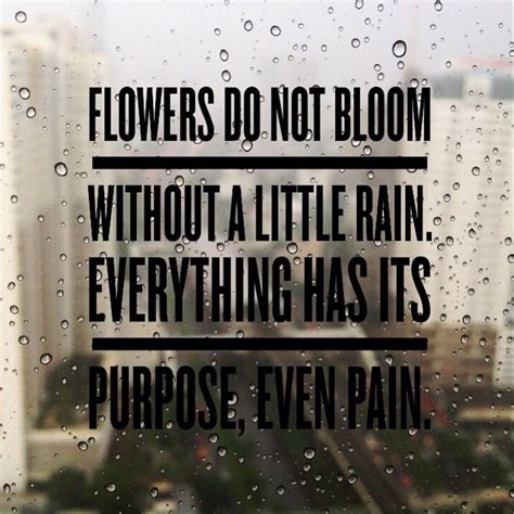bloom quotes bloom pictures quotes