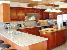 Kitchen Remodel Ideas Budget by Small Kitchen Design Ideas Budget Afreakatheart