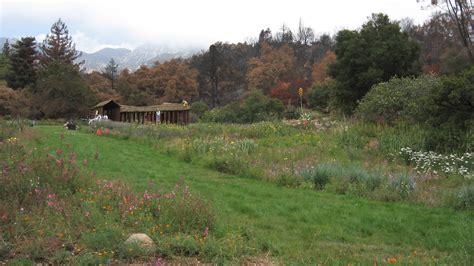 santa barbara botanic garden the cultural landscape