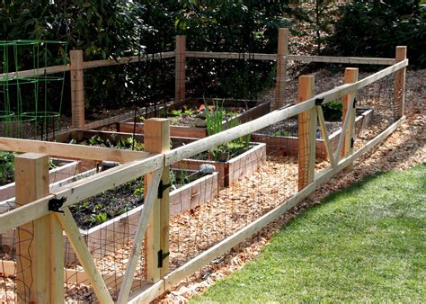 Vegetable Garden Fence A Good Looking Protection Garden Building Vegetable Garden
