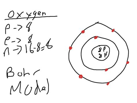 oxygen bohr diagram oxygen bohr model science showme