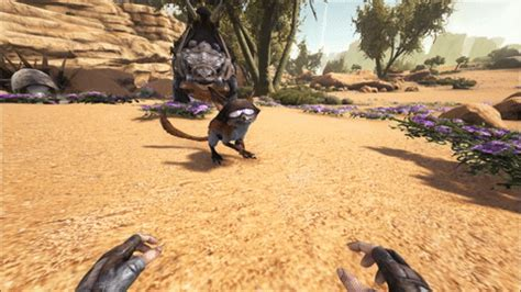 Ark Survival Evolved Detox by Related Keywords Suggestions For Jerboa