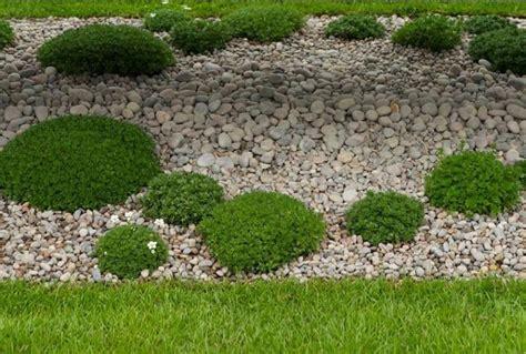 comprar piedras jardin comprar piedras para jardin gallery of donde comprar