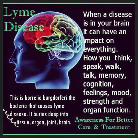 chronic lyme disease health news tips trends 17 best images about lyme disease information dr sam