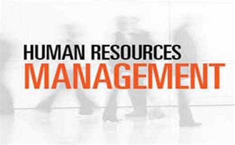 dealdey human resources management