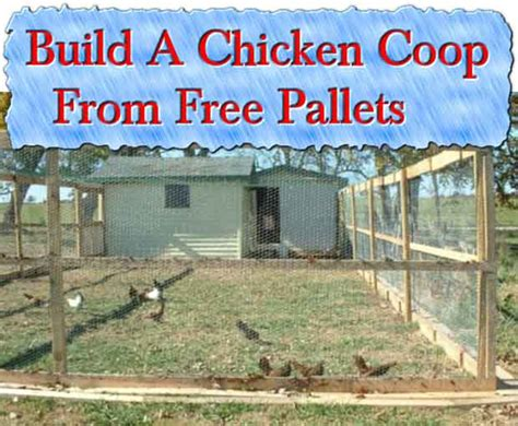 building a hen house free plans building a chicken coop diy tutorial