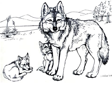 Free Printable Wolf Coloring Pages For