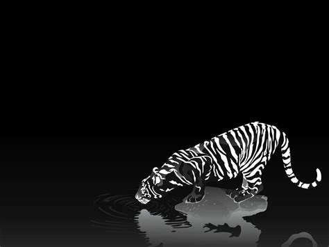 wallpaper 3d black and white 3d black wallpapers wallpaper cave