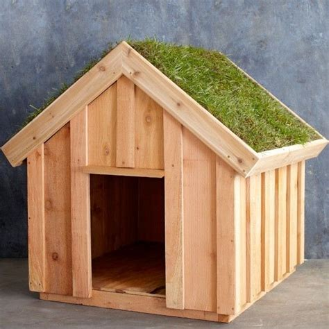 medium house dogs living roof dog house medium 597 back garden pinterest dog houses medium and