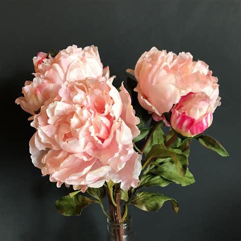 Luxury Pink luxury large light pink peony heavenlyhomesandgardens co uk