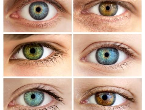 different types of eye colors human eye color almost all coulurs of the rainbow
