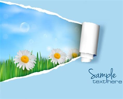 Svg Pattern Background Cover | cover free vector download 5 046 free vector for