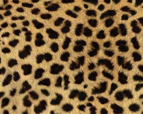 pattern photoshop animal fondos de pantallas animal print imagui