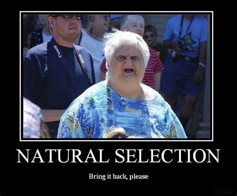 Natural Selection Meme - natural selection