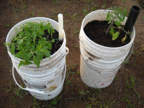 self watering containers diy sip containers