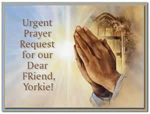 prayer for blessing a new car car prayers for healing car