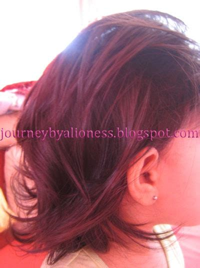 lioness style haircut how to cut girl toddlers hair lioness s journey