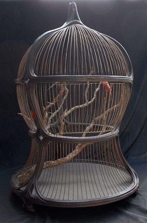 Decorative Bird Cages by Antique Decorative Bird Cage