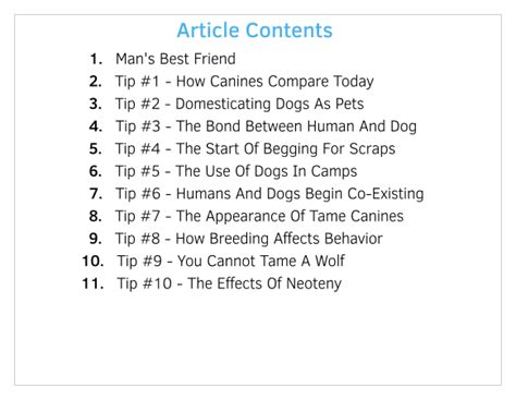 10 Facts About Dogs by 10 Facts About Domestication Ownership 101