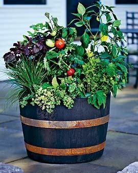 wine barrel planter ideas 8 wine barrel planter how tos guide patterns