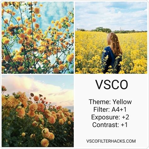 vsco nature tutorial 11 best vsco filters for nature images on pinterest