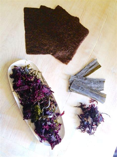 alghe cucina ricerca ricette con zeppole di alghe giallozafferano it