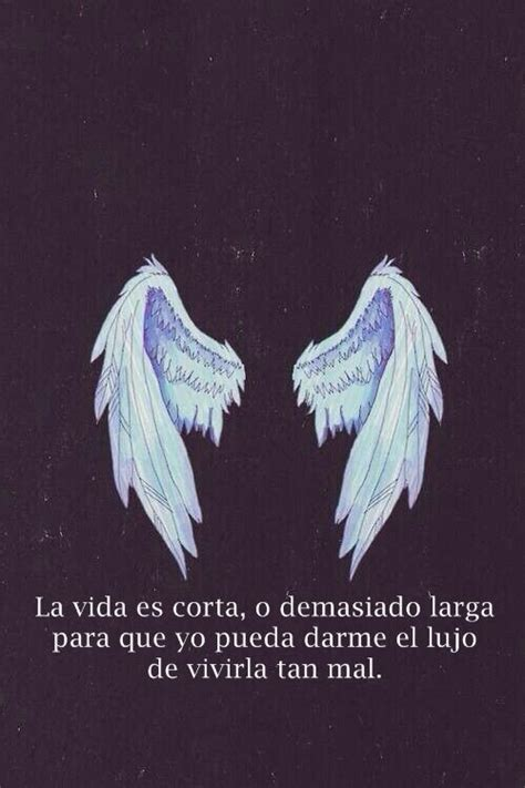libro on angel wings 115 best images about libros