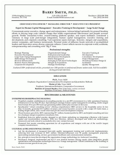 Resume Sle For It Executive Executive Resume Executive Resume Writing Service From