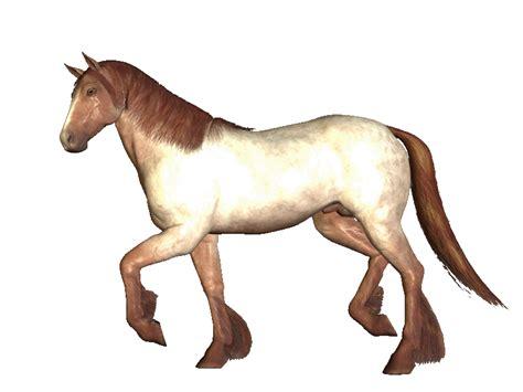gif de amor hasta viejitos gif animados gif animado de caballo saltando