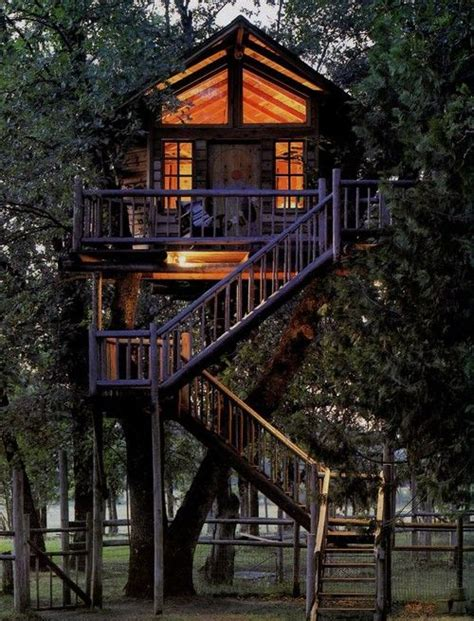tree houses for adults tree living