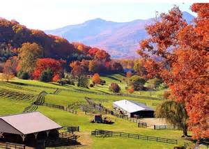 asheville fall colors page not found trulia s