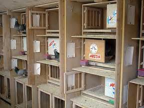 Backyard Chicken Coops by The Meeting Place For The Racing Pigeon Sport