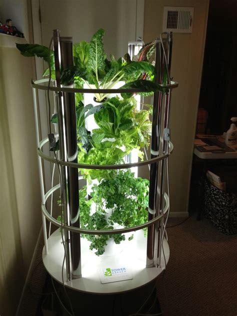 grow light indoor garden my indoor tower garden with grow lights outside in