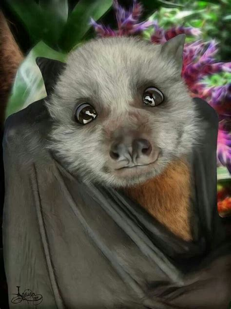 cute baby flying fox bat look at that face murcielagos pinterest look at