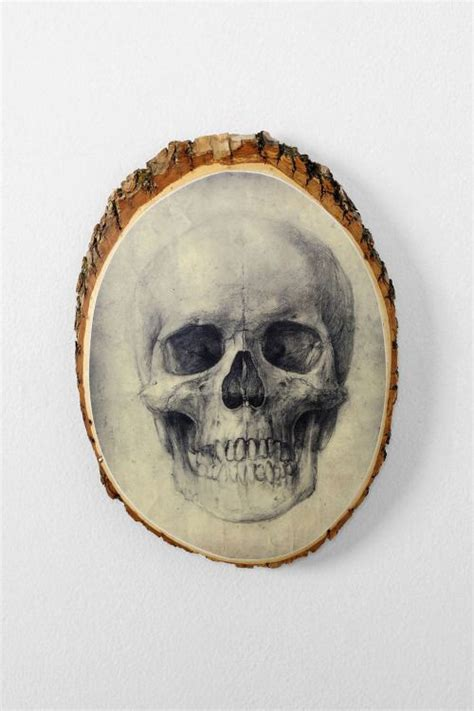 decorating with skulls a bold and daring trend 17 best images about trend skulls and bones on pinterest
