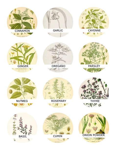 printable herb tags 185 best etiquetas frases para decopage images on