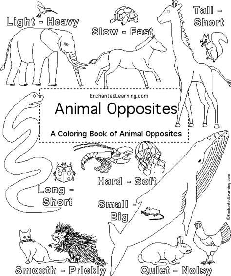 opposites coloring pages for toddlers enchanted learning astronomy crafts